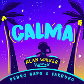 Calma (Alan Walker Remix) by Pedro Capó