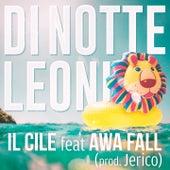 Di notte leoni di Il Cile