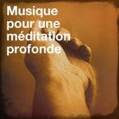 Musique pour une méditation profonde by Various Artists