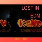 Lost In Edm Weekend Edm Tracks von Various Artists