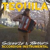Tequila (Accordion Instrumental) (Instrumental) de Squeeze
