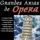 Grandes Arias de Opera by José Luis Duval
