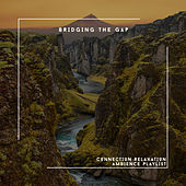 Bridging The Gap - Connection Relaxation Ambience Playlist von Relaxing Chill Out Music