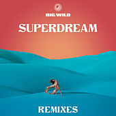 Superdream (Remixes) von Big Wild