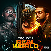 Real World by Terry$