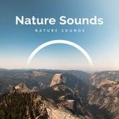 Nature Sounds von Various Artists