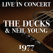 Live In Concert The Ducks & Neil Young 1977 de Ducks