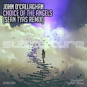 Choice of the Angels (Sean Tyas Remix) von John O'Callaghan