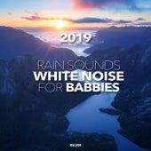 Rain Sounds & White Noise For Babies 2019 - EP de Rain Sounds (2)