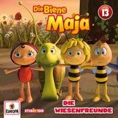 13/Die Wiesenfreunde (CGI) von Various Artists