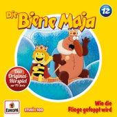 12/Wie die Fliege gefoppt wird von Various Artists