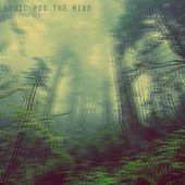 Music for the Mind by King Ital Rebel