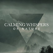 Calming Whispers of Nature de Nature Sounds Artists