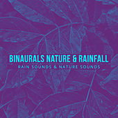 Binaurals Nature & Rainfall by Rain Sounds