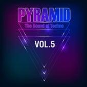 Pyramid, Vol. 5 (The Sound of Techno) de Various Artists