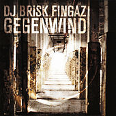 Gegenwind by Brisk Fingaz