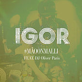 #Mäoonmalli de IGOR