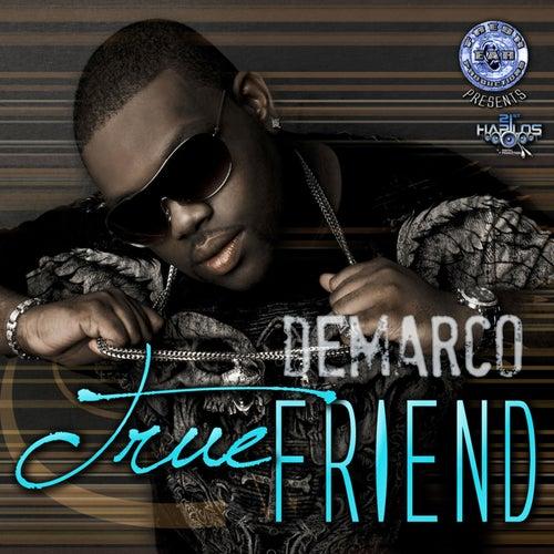 True Friend by Demarco