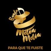 Para Que Te Fuiste by Banda Melon Melon