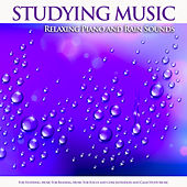 Studying Music: Relaxing Piano and Rain Sounds For Studying, Music For Reading, Music For Focus and Concentration and Calm Study Music de Studying Music