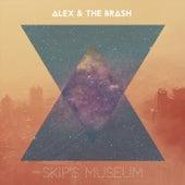 Skip's Museum by Alex