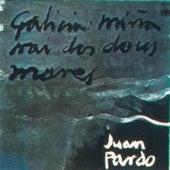 Galicia Miña Nai Dos Dous Mares (Remasterizado) de Juan Pardo