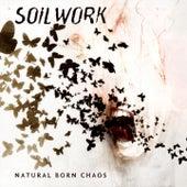Natural Born Chaos by Soilwork