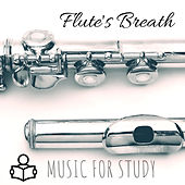 Music for Study: Flute's Breath di Various Artists