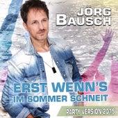 Erst wenn's im Sommer schneit (Party Version 2019) von Jörg Bausch