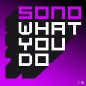 What You Do von Sono