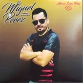 Amor Sem Fim de Miguel Perez