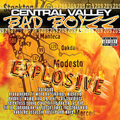 Central Valley Bad Boyzz: Explosive by Various Artists