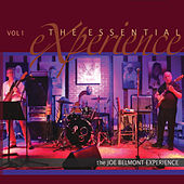 The Essential Experience, Vol. I de The Joe Belmont Experience