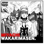 Wakarimasen von Miyachi