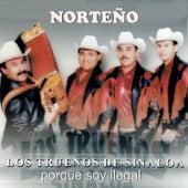 Porque Soy Ilegal de Los Truenos De Sinaloa