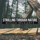 Strolling through Nature de Various Artists