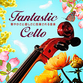 Fantastic Music with Violoncell de Various Artists