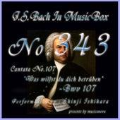 Cantata No. 107, ''Was willst du dich betruben'', BWV 107 van Shinji Ishihara