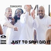 Just to Say I Did It von Concept Z