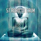 57 Road to Calm von Massage Therapy Music