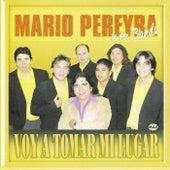 Voy a Tomar Mi Lugar by Mario Pereyra y Su Banda