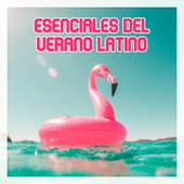 Esenciales del verano latino von Various Artists