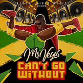 Can't Go Without by Mr. Vegas