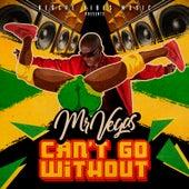 Can't Go Without de Mr. Vegas
