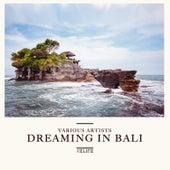 Dreaming in Bali van Various Artists