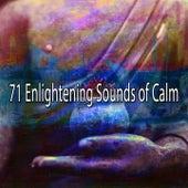 71 Enlightening Sounds of Calm de Meditación Música Ambiente