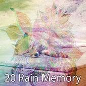 20 Rain Memory de Thunderstorm Sleep