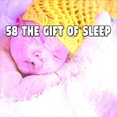 58 The Gift of Sleep de Water Sound Natural White Noise