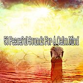 50 Peaceful Sounds for a Calm Mind von Massage Therapy Music