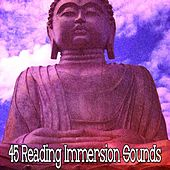 45 Reading Immersion Sounds von Lullabies for Deep Meditation